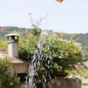 Villa Raffaelli - doccia esterna
